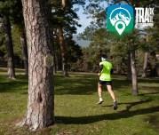 Track Trail desafio urbion (10)