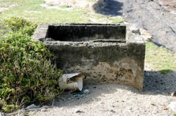 Cotton Gin remains in Grand Bay.