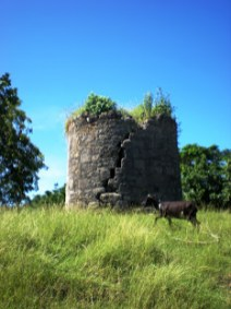 Ruins of an old Windmill - storage room.