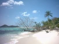 Inward side of Sandy Island.
