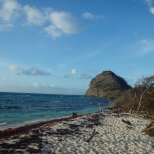 Visiting white island with isle of reef tours.