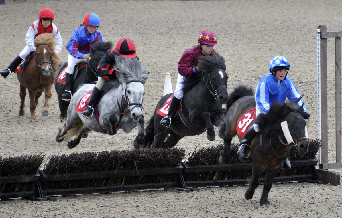 a bit of the excitement from the final round of the Shetland Pony Grand National (look at the jumping form of that gray pony!!)