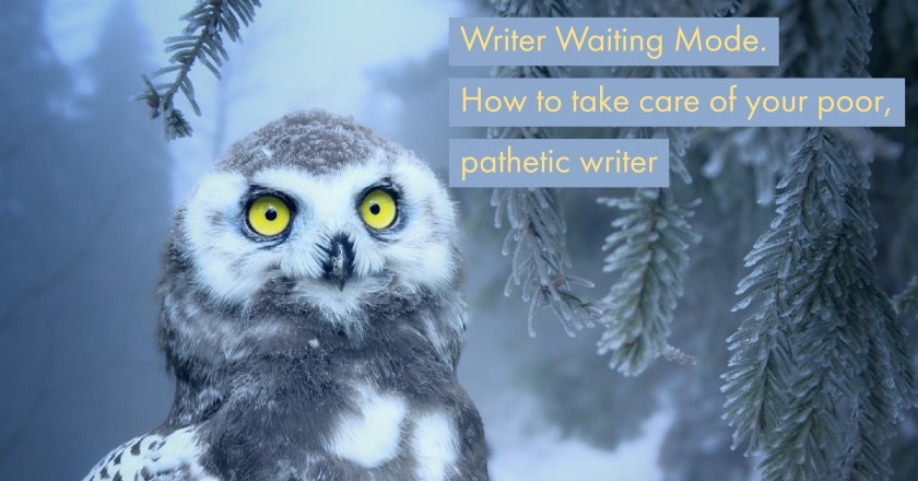 How to take care of your pathetic writer - some dog tips
