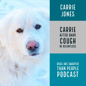 dogs are smarter than people carrie after dark being relentless to get published