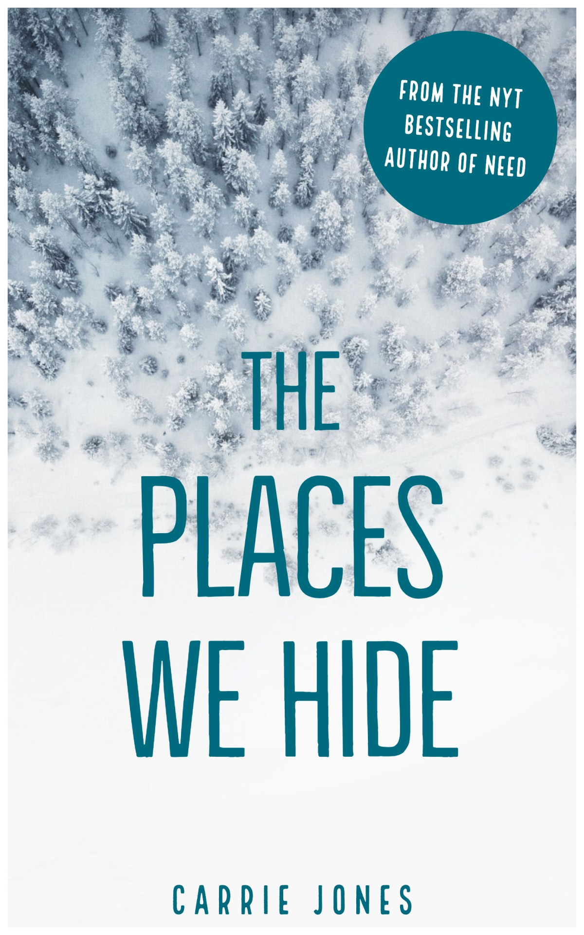 The Places We Hide by Carrie Jones