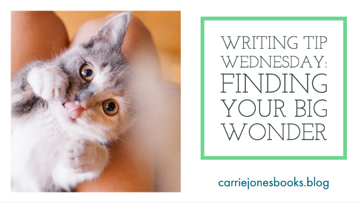 Writing Tip Wednesday: Finding Your Big Wonder