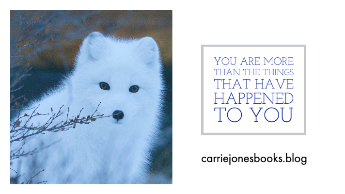 You Are More Than The Things That Have Happened To You