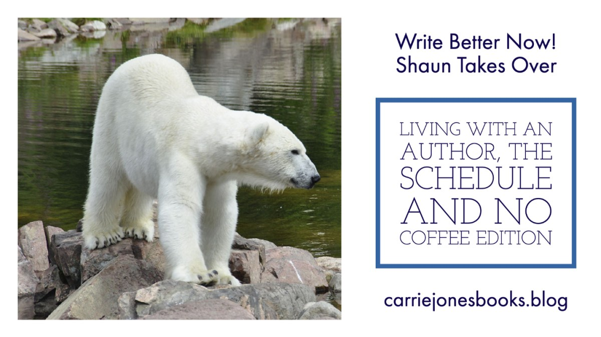 Shaun Takes Over the Blog: Living With an Author, the Schedule Edition