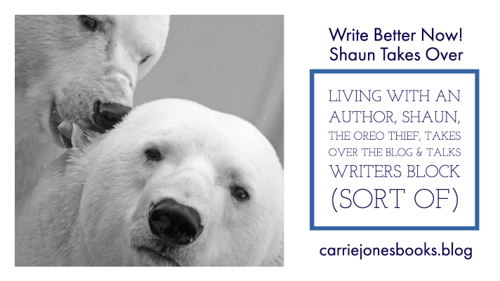 Shaun, the Oreo Thief, Takes Over the Blog