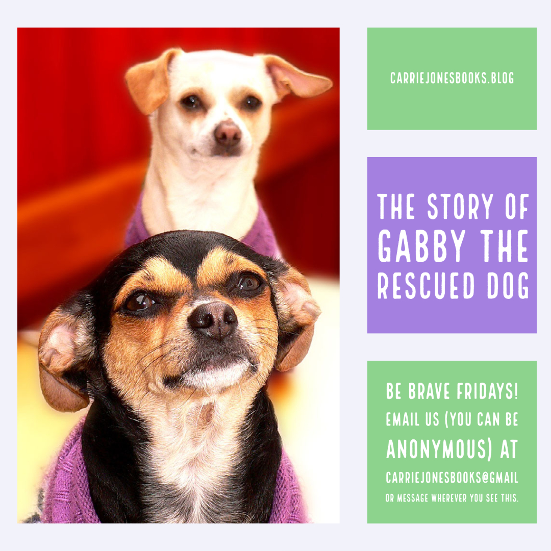 BE BRAVE FRIDAY – THE STORY OF GABBY THE RESCUED DOG