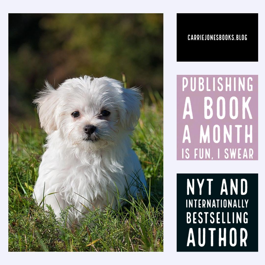Publishing a Book a Month is Fun, I Swear