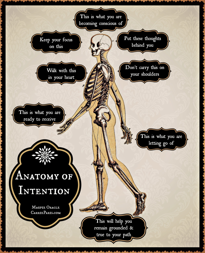 Anatomy of Intention Casting Sheet