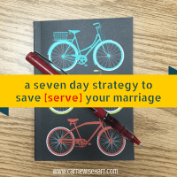 a seven day strategy to save [serve] your marriage