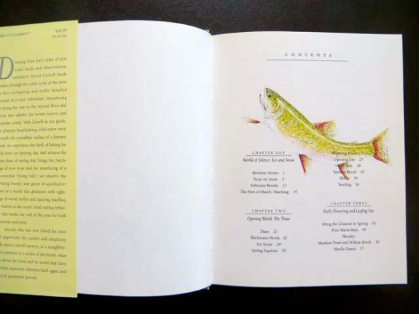 Trout Reflections Hardcover, first edition, out of print, with original pencil and watercolor study of a leaping brook trout