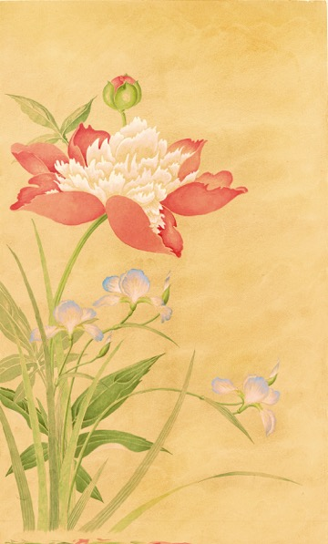 Red Peony Botanical Watercolor by David M. Carroll