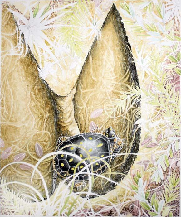 Hatchling Hides in a Deer's Footprint