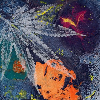Legalisation of Cannabis: Freedom of Choice vs State Duty to Protect