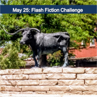 May 25: Flash Fiction Challenge
