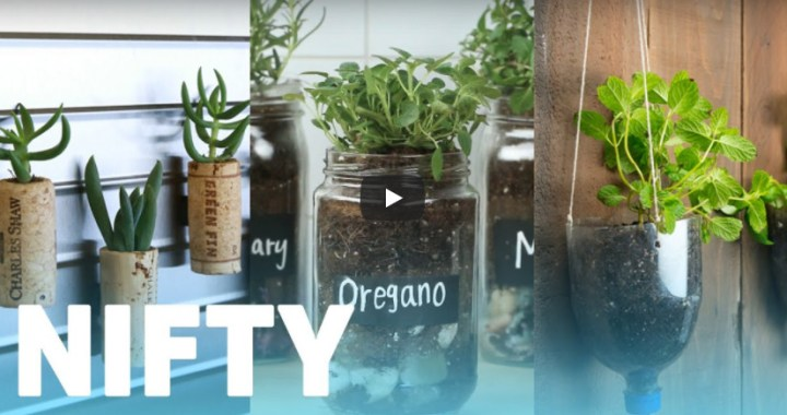 10 Favourite Gardening Buzzfeed videos #3