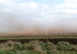 Mar 2011peat wind erosion at Killerby carr