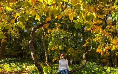 Fall Fun & Foliage At The University Of Minnesota Arboretum