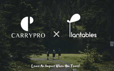 Leave An Impact When You Travel