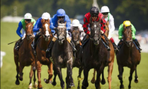 duke - glorious goodwood - It's go big or no home for the Duke of Goodwood