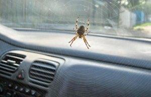 toyota-spider-recall