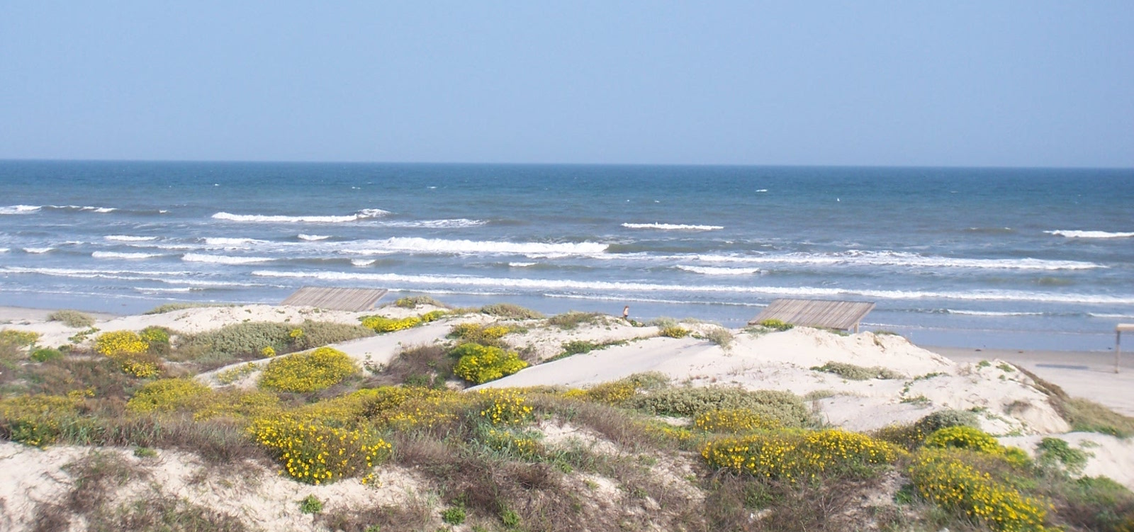 17-South-Padre-Island-to-Mustang-Island-0161