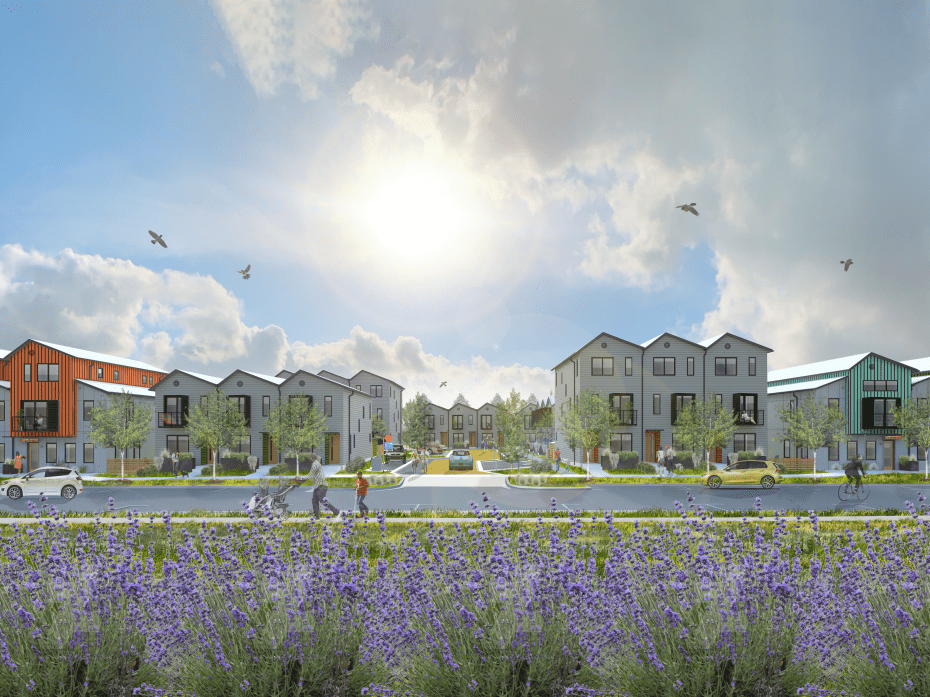 Lively Lane Townhomes