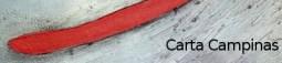 cheida 04 banner