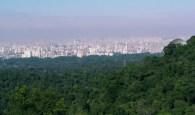 Wiki - Cantareira São Paulo