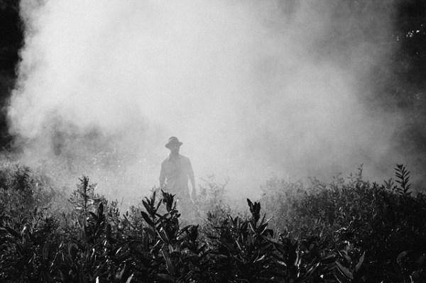 fog-918976_640