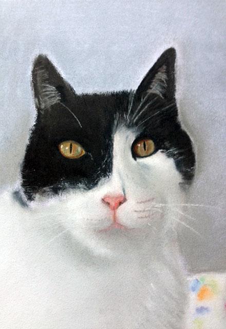 Su primer dibujo al pastel: su gato Tomás.