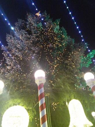 Mercado de Natal 2014