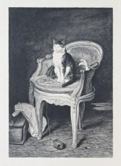 Le Chat - Gravure ancienne