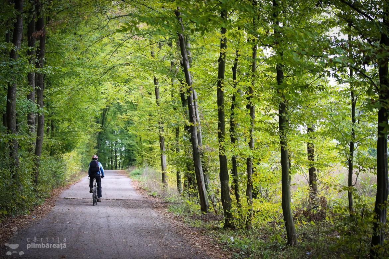 bicicleta-ciolpani-paduera-snagov-manastirea-tiganesti_03