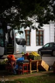 bicicleta-ciolpani-paduera-snagov-manastirea-tiganesti_09