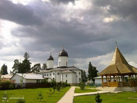 Bicicleta- soc - maci si natura la Manastirea Tiganesti_02