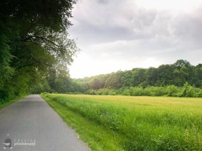 Bicicleta- soc - maci si natura la Manastirea Tiganesti_06