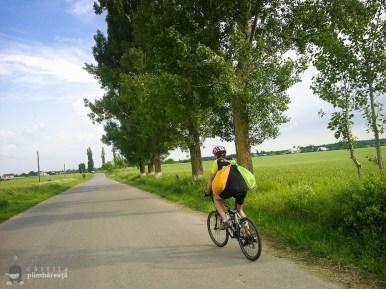 Bicicleta- soc - maci si natura la Manastirea Tiganesti_10