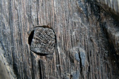 Biserica de lemn din Bradet - David Zugravul_18