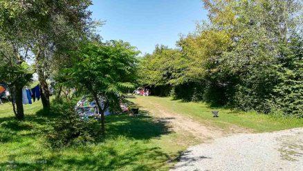 Camping Carta Fagaras Sibiu_17