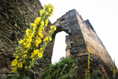 Castelul din Carpati sau Cetatea Colt_07