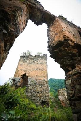Castelul din Carpati sau Cetatea Colt_23