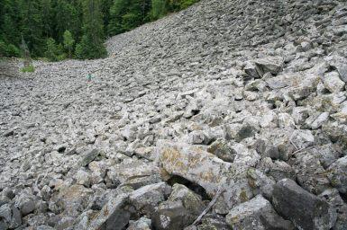 Marea de bolovani sub Detunata Goala - Detunatele - Muntii Apuseni / Metaliferi