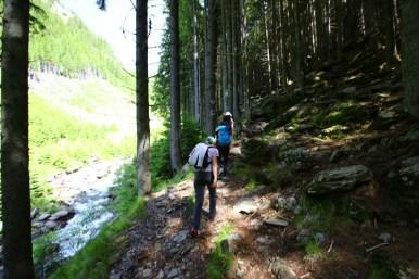 Fagaras traseu Piscul Negru - Lacul Caltun_04