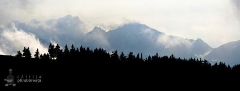panorama superba spre Muntii Ciucas, mai precis Creasta Gropsoarele-Zaganu