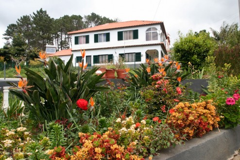 Madeira e cu adevarat insula florilor