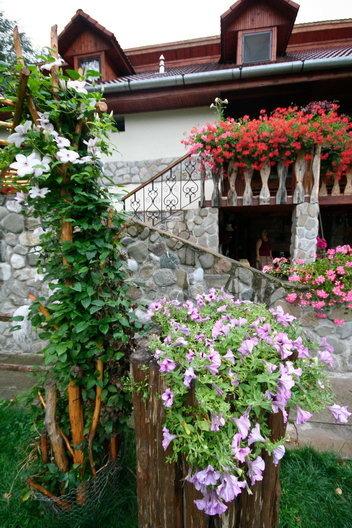 Pensiunea Floare de Colt - Poiana Galdei (zona Intregalde)_04_resize